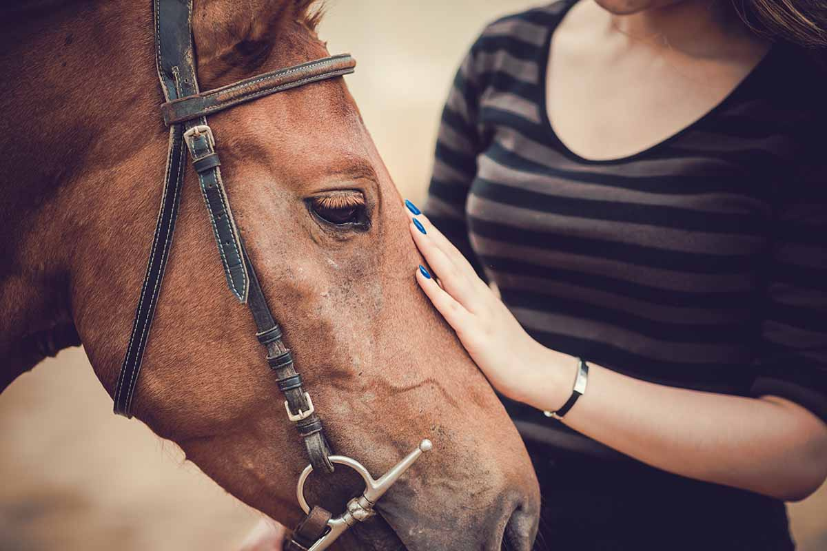 woman partakes in equine therapy